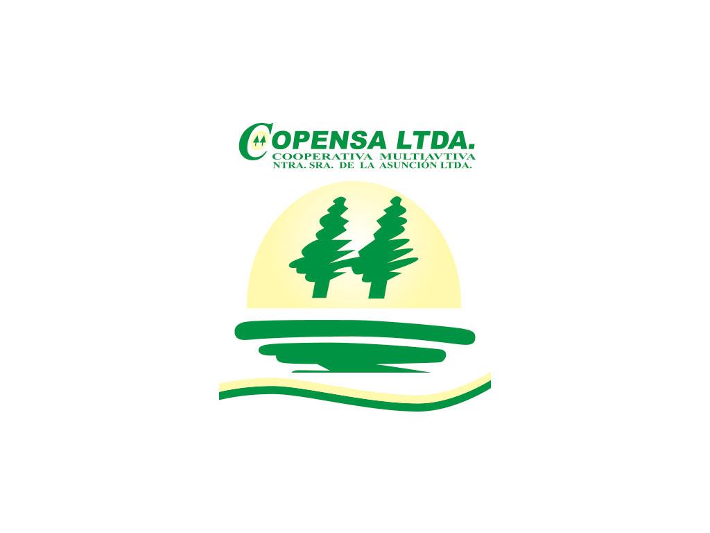 CoopNSA